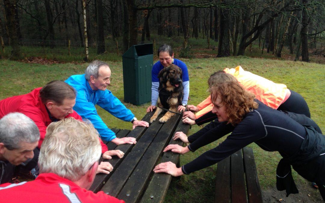 Training zamo 8 uur met hond…